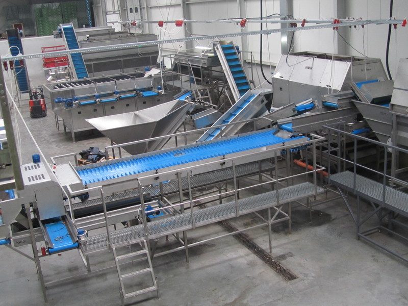 Pro-vega production line2